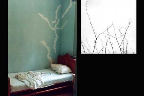2000-cama-para-sonhar-01